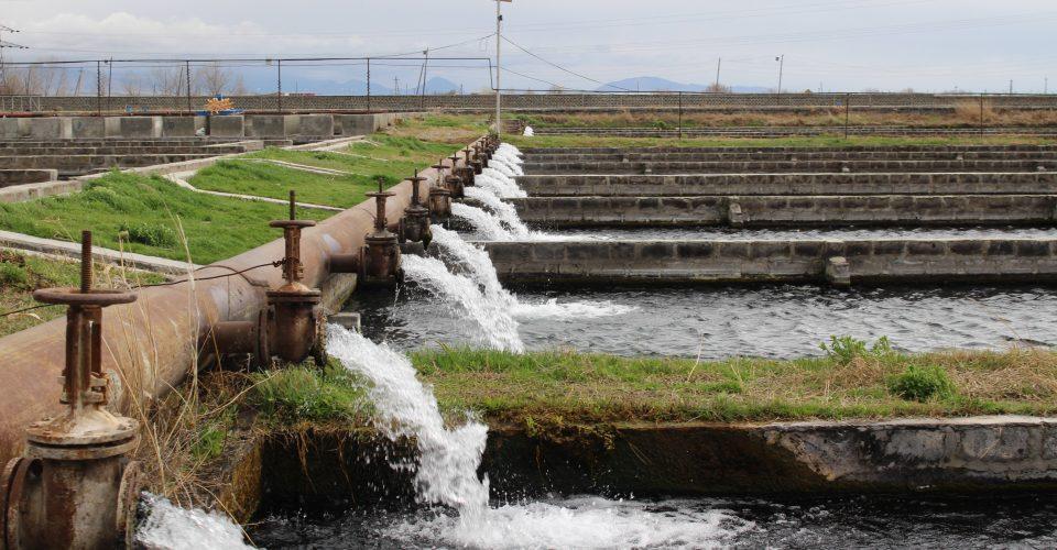 دستگاه تصفیه آب پرورش ماهی